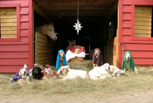 DOG-NATIVITY-SCENE-01